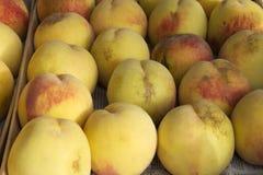 许多桃子 库存图片