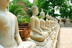 许多沿道路的菩萨在寺庙 免版税库存图片