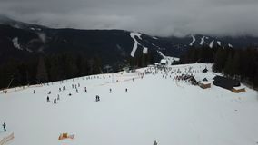 许多滑雪者和挡雪板下降在滑雪倾斜下 股票视频