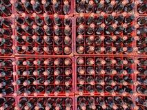 许多炼焦或在的可口可乐瓶交付的塑料筐到顾客 库存照片