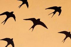 许多燕子剪影  免版税库存照片
