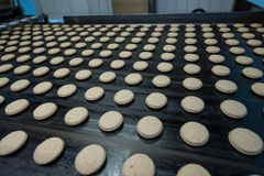 许多甜蛋糕食物工厂巨型的生产 库存照片