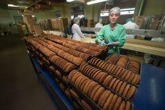 许多甜蛋糕食物工厂巨型的生产 免版税库存照片