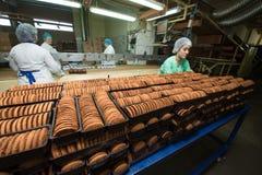 许多甜蛋糕食物工厂巨型的生产 免版税库存图片