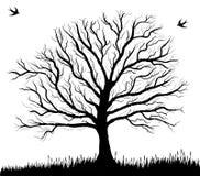 许多生态的图象我的投资组合结构树向量 免版税图库摄影