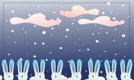 许多的野兔s 免版税库存图片