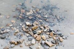 许多石头是坚硬的,并且光滑的在河水,夏天是春天、自然本底和纹理 透明度和纯净 库存照片