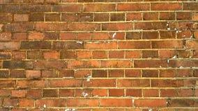 许多砖的砖老纹理墙壁 免版税库存图片
