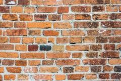 许多砖的砖老纹理墙壁 图库摄影