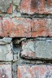 许多砖的砖老纹理墙壁 库存图片