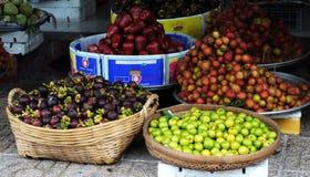 许多种类热带水果在市场上在Vinhlong,越南 库存照片