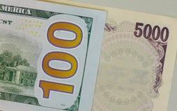 许多种类钞票-接近  库存照片