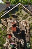许多老葡萄酒木鸟舍被栓入树 免版税库存图片