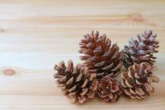 许多自然干燥杉木锥体特写镜头在另外大小的在浅褐色的木桌上 库存图片