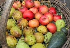 许多苹果和梨在老篮子在秋天 免版税库存图片
