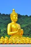 许多菩萨雕象 库存照片
