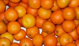 许多蜜桔 库存图片