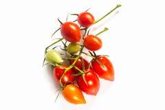 许多西红柿白色背景 免版税图库摄影