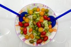 许多颜色蕃茄  免版税库存照片