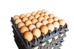 许多鸡蛋 免版税库存照片