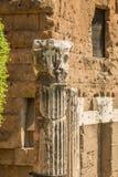论坛罗马废墟 免版税库存图片