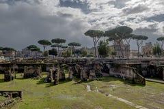 论坛Romanum在罗马在意大利 库存照片