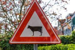 讽刺路标,通过戒备的母牛 免版税库存图片