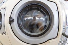 设备洗涤物 免版税库存图片