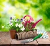 设备从事园艺的室外夏天工作 库存图片