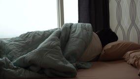设法的人早晨睡觉 股票视频
