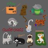 设置不同的猫用不同的姿势有在灰色背景 r 向量例证
