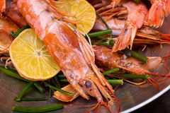 设置与冠锐利的海螯虾壳在他的头用柠檬可口纤巧啤酒的一道可口开胃菜 免版税库存图片