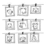 设置与动物画象,手拉的传染媒介例证的画框 免版税图库摄影