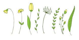 设置与春天分支和花 设计要素例证离开向量 免版税库存图片