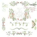 设置与框架边界、花卉装饰装饰品与水彩花,叶子和分支婚姻的 库存图片