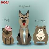 设置与纯血统狗 免版税库存图片