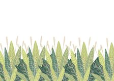 设置与花卉元素和叶子 您的设计叶子的装饰元素打旋花卉平的设计样式传染媒介例证 库存图片