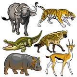 设置与非洲的野生动物 向量例证