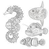设置与zentangle鱼 库存照片