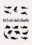 设置传染媒介鲨鱼剪影 库存例证
