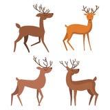 设置冬天鹿动物 向量例证