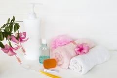 设置口腔医疗保健与草本肥皂的身体皮肤的 免版税库存照片