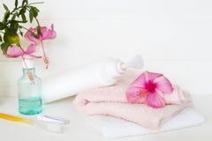 设置口腔医疗保健与草本肥皂的身体皮肤的 免版税图库摄影
