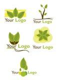 设置叶子商标 库存图片