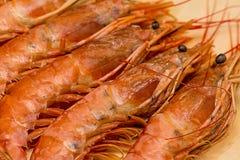 设置在壳的海螯虾morselic纤巧大与头和饮食盘黑眼圈特写镜头  图库摄影