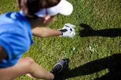 设置在钉的高尔夫球 免版税库存照片