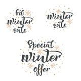 设置手写的冬天销售题字 大冬天销售,特别冬天提议,冬天销售传染媒介手字法 brusher 库存例证