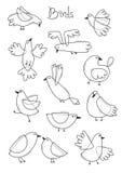 设置抽象鸟品种  简单的线设计 彩图页 也corel凹道例证向量 免版税库存图片