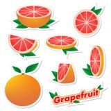 设置新鲜的柑橘贴纸与皮肤的切的和整个葡萄柚果子与在白色背景的绿色叶子 h的概念 库存照片