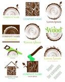 设置树干的横断面与年轮的 向量 徽标 平的象 库存图片